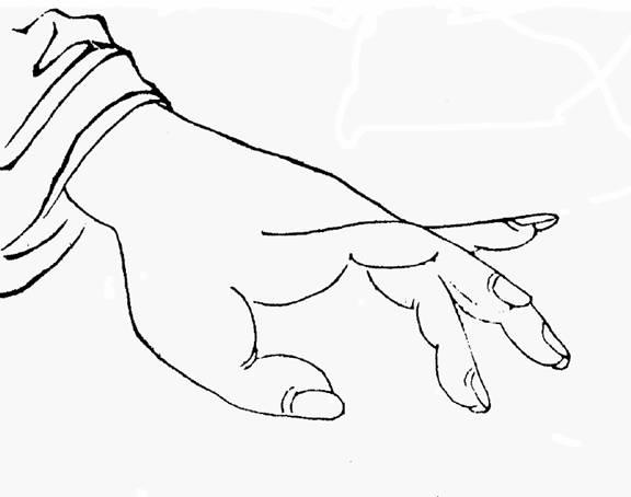 Volume 4, finger appearance
